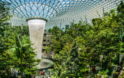 Jewel Changi Airport Development Completion of TMS, EIS & IFS